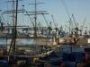 827. Hafengeburtstag - 1 (74 von 94)