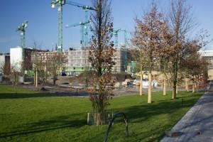 Baustelle Lohsepark
