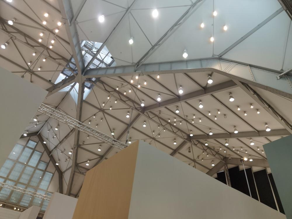Hasu Deckenkonstruktion Deichtorhalle